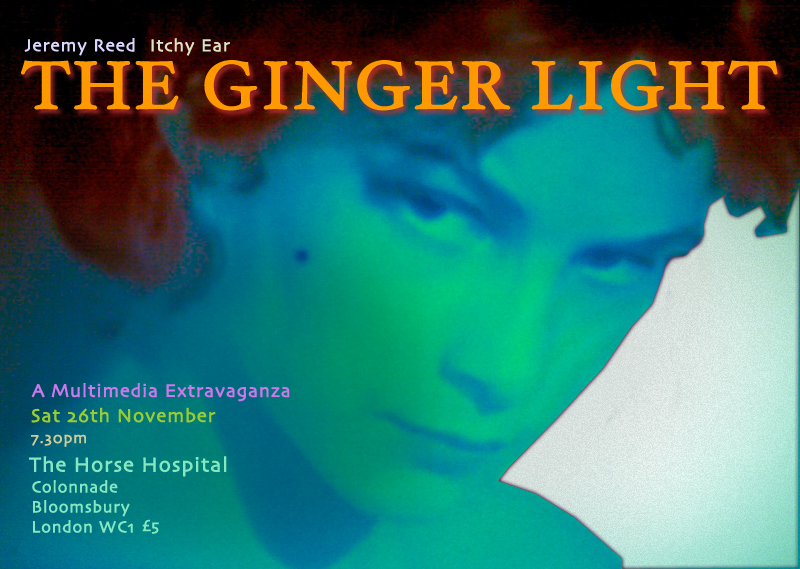 ginger light flyer f