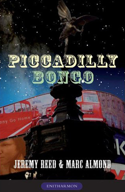 picadilly bongo cover